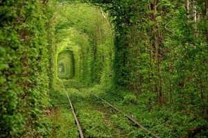 %22Tunnel of Love%22 Kleven, Ukraine